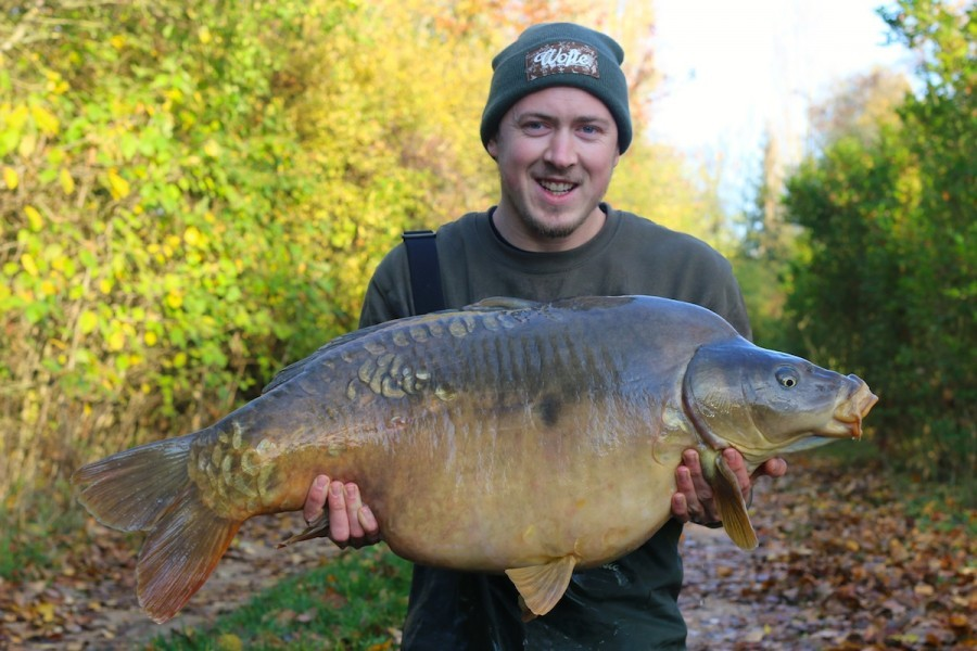 Broady's Mirror 41lb 8oz tree line 31.10.15