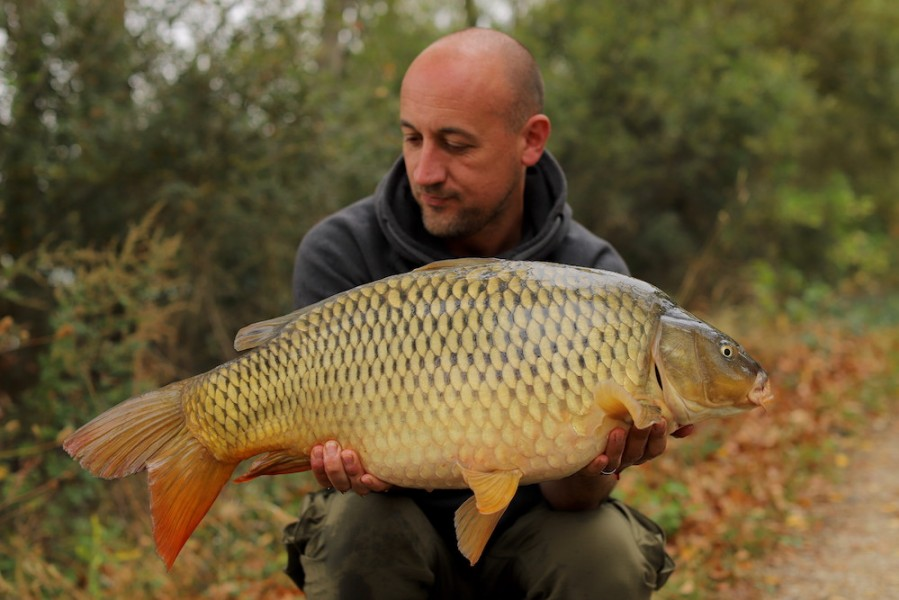 Gareth Radley, 19lb 8oz, The Alamo, 21.9.19