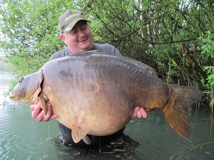 Great feedback for Gigantica