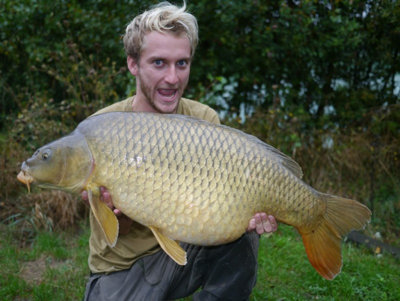 physco dove with a 34.08lb common