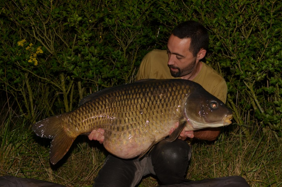 Jon Mann, 50lb 8oz, Stock Pond, 23.8.14