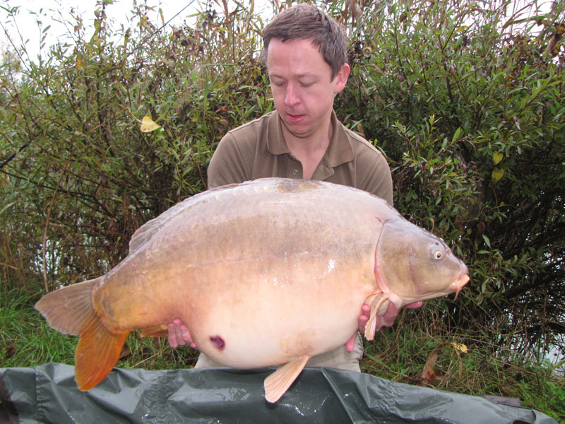 Unknown 43lb.