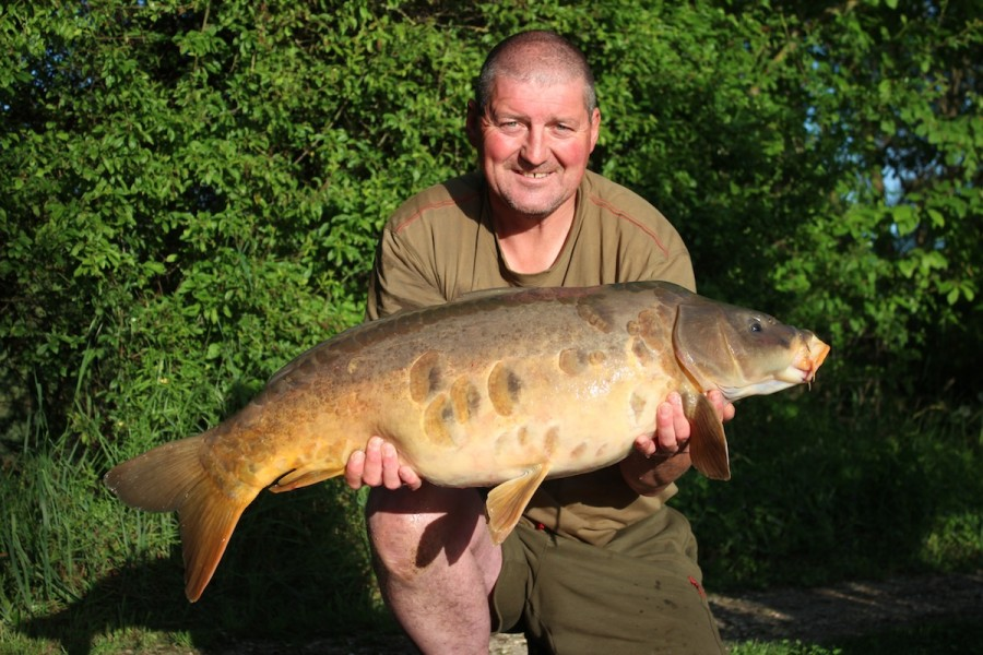 A scaly mirror from The Tree Line 30#1