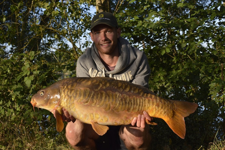 Dom with a Scaly mirror