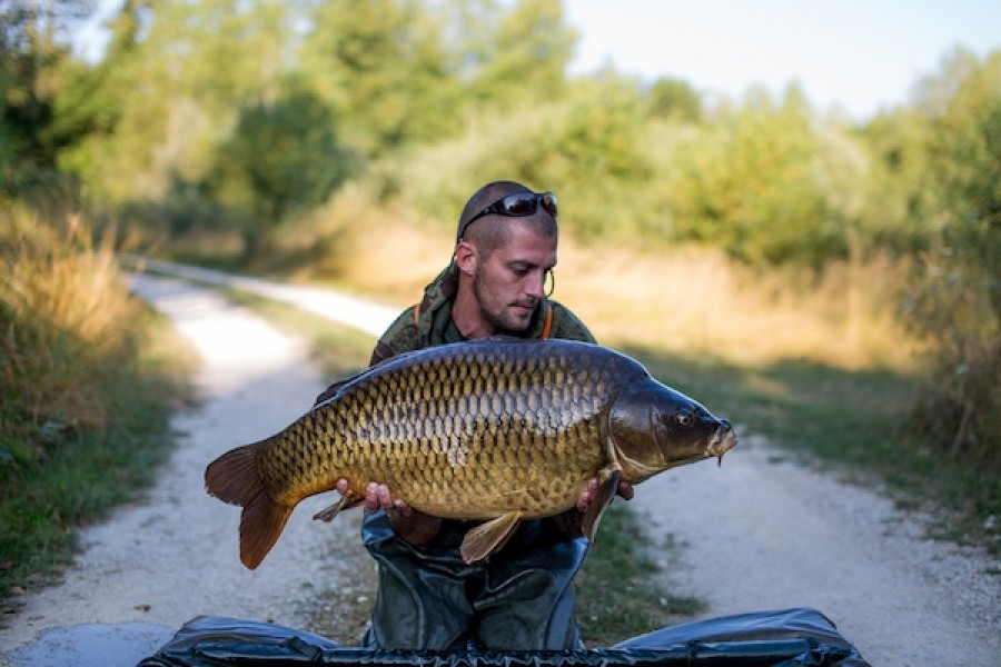 38.12lb common Alcatraz 13.08.16