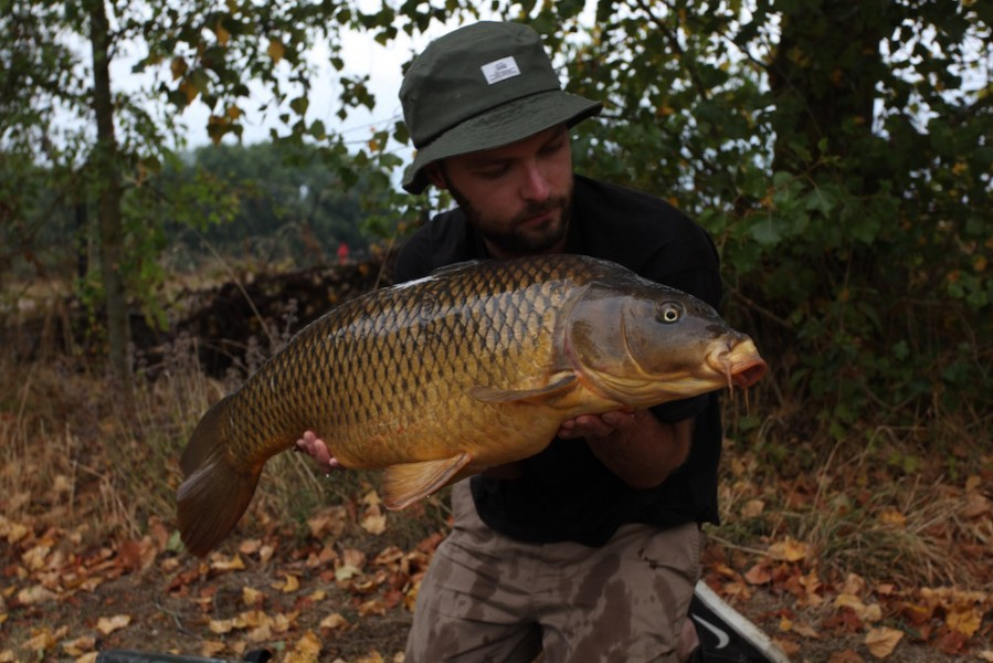 Rav with a 24lb common