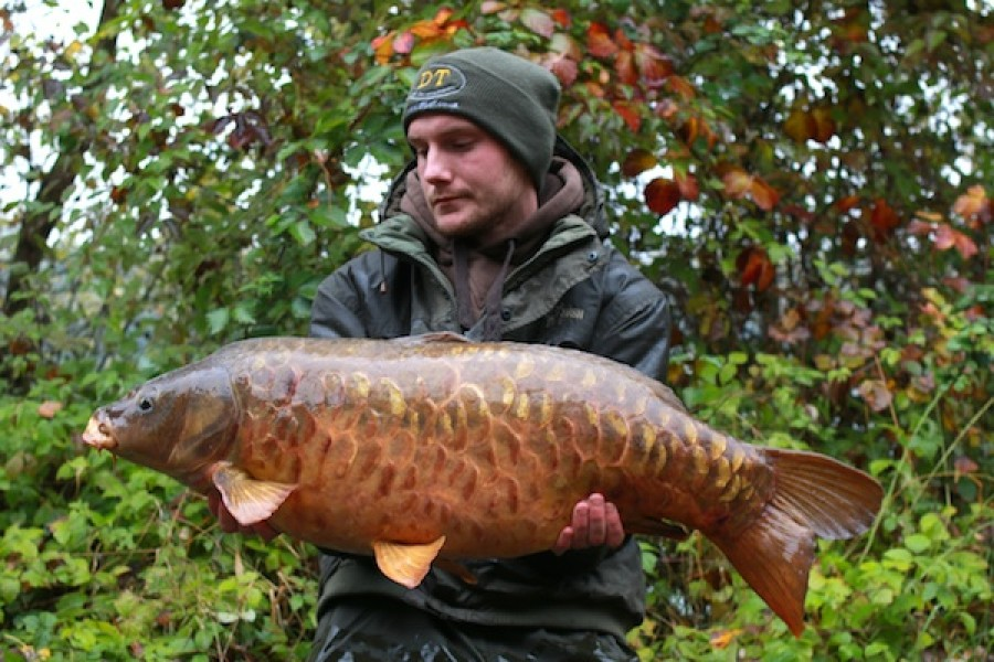 Thomas Moeller with the Wood Carving at 33lb from Bobs' Beach in October 2016