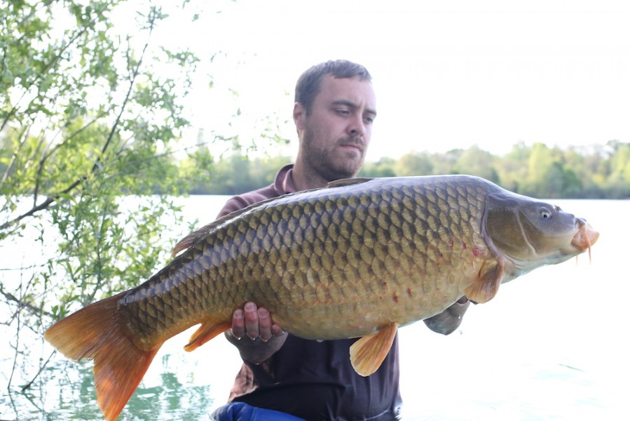 Richard Austin with a 33lb Common from Stock Pond 29.4.17