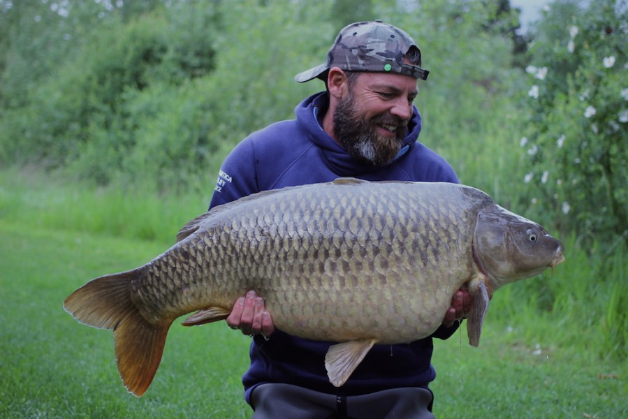 Dave's Common at 38lb from Alcatraz 13.5.17