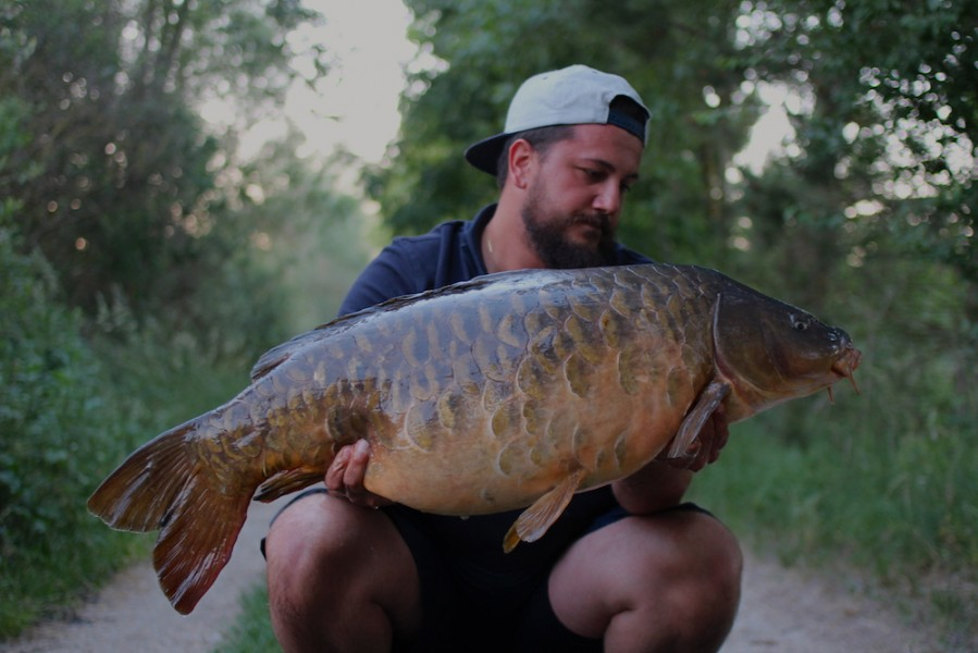 Alen Gavranovic, 38lb 8oz, Big Girls, 27.05.17