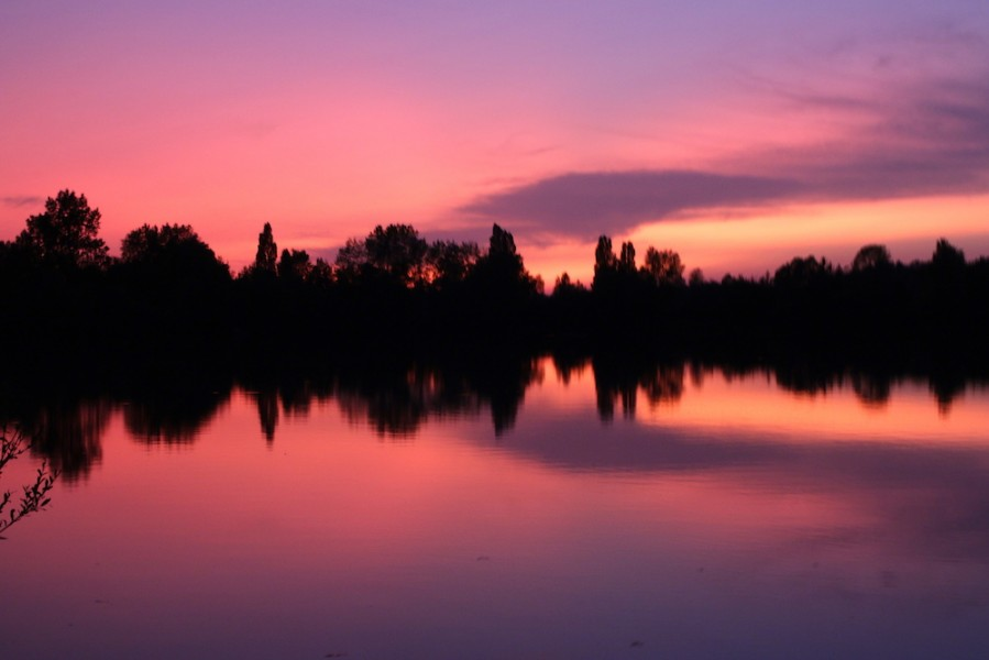 Gigantica....Sunset's Only Better.
