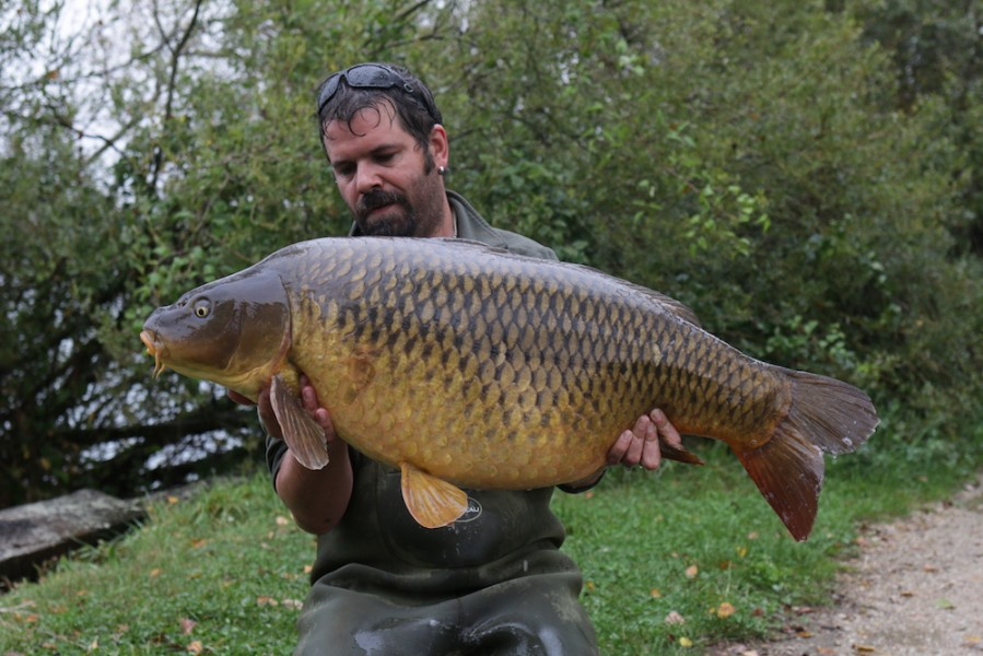 Andy with Classico, 46lb, Big Girls, 23.09.17