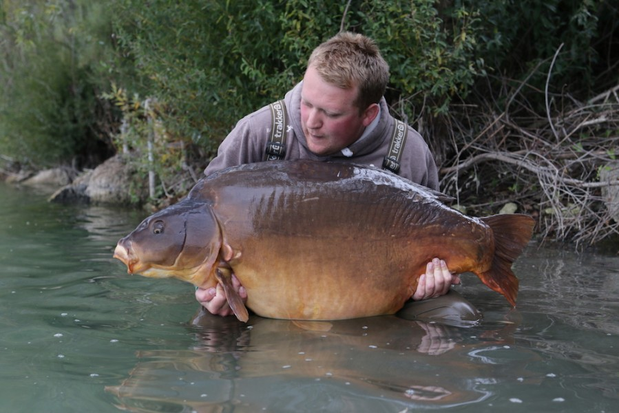Jake with the mighty Fudgy's at 80lb