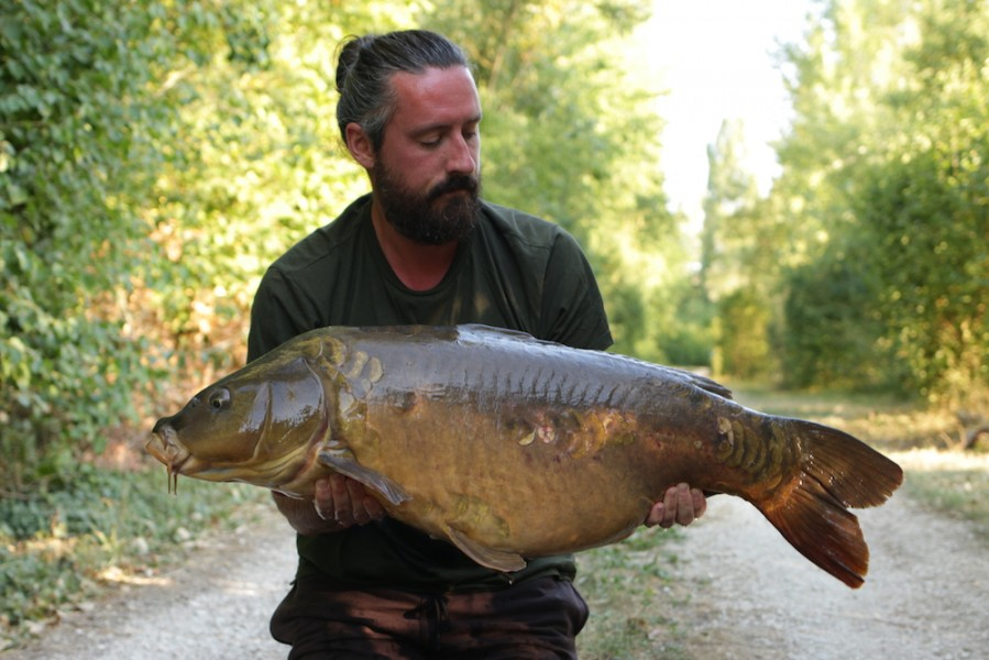 Rob Dungate, 36lb 12oz, Bob's Beach, 4.8.18