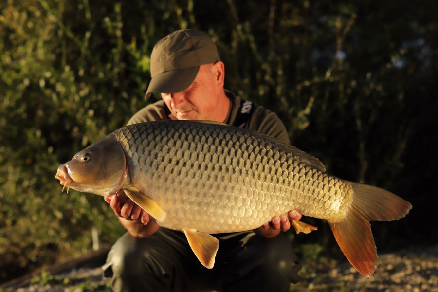 Squeaky Clean 22lb Common