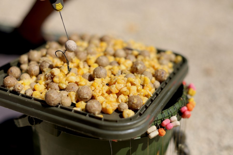 Maize feature in most successful bait mixes..