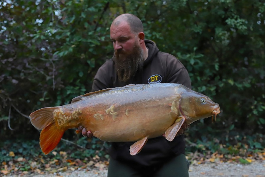 Anders Frenk, Beach, 33lb 8oz, 17.10.20