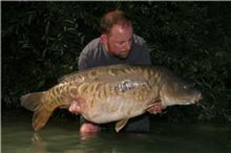 just look at this fish, amazing. 46+