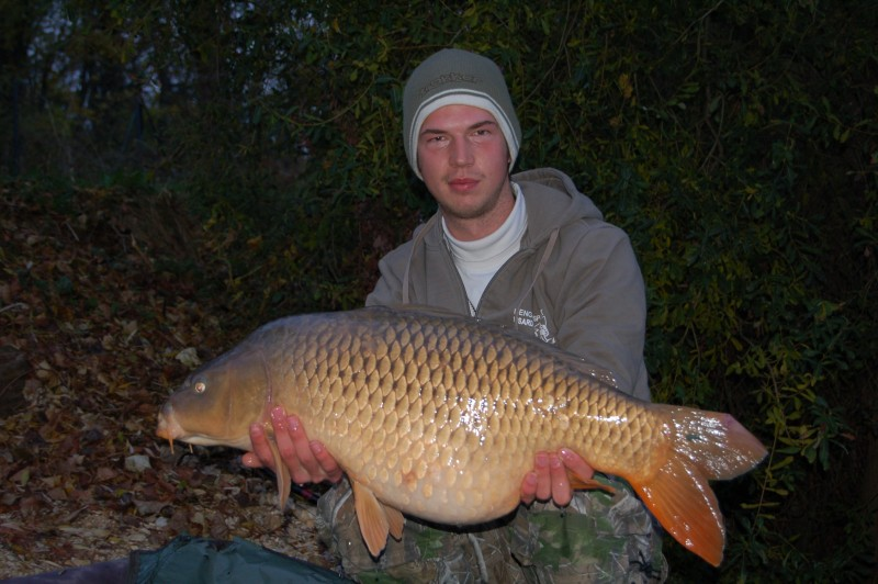 Jeroen, 26lb beautiful common